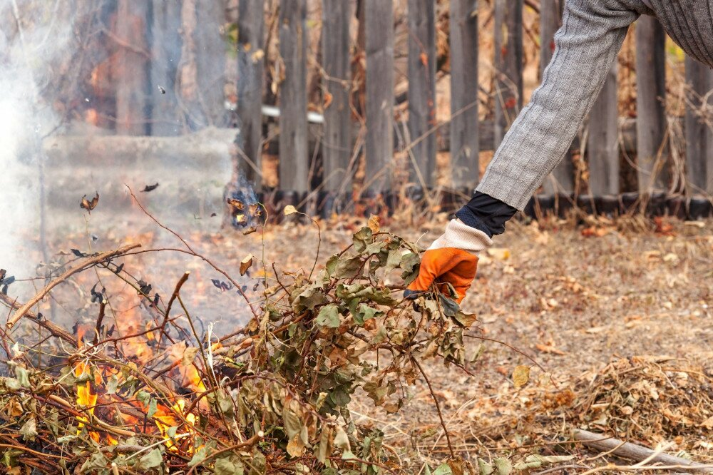 Burn trash.A man throws dry grass into a fire