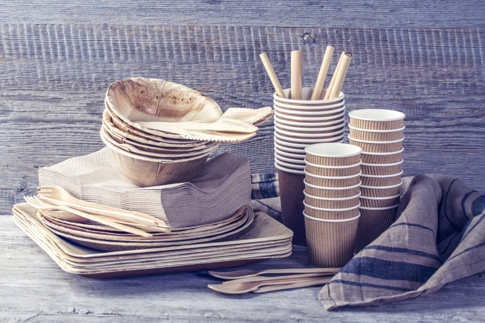 Eco friendly disposable tableware on a wooden background